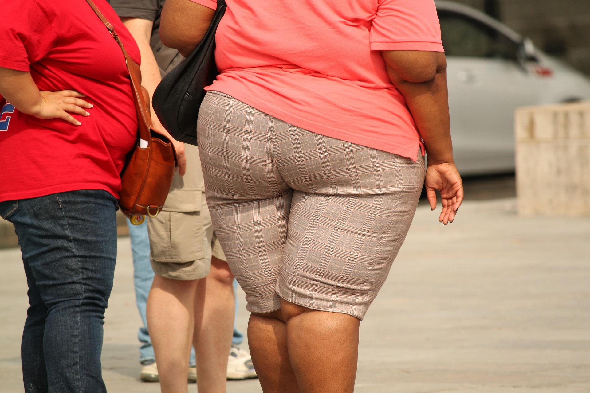 MamiWiki Adipositas Schwangerschaft Fettleibigkeit