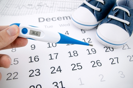MamiWiki Zykluskalender